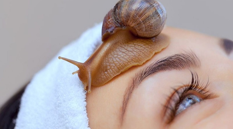 The Benefits of Snail Mucin for Your Skin